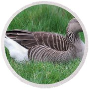 Sitting Goose Round Beach Towel