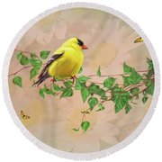 Round Beach Towel featuring the photograph Sitting Pretty by Mary Timman