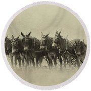 Six Mules, And One More Round Beach Towel by Nicki McManus