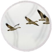 Six Snowgeese Flying Round Beach Towel