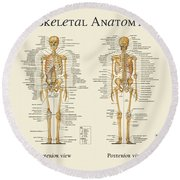 Round Beach Towel featuring the digital art Skeletal Anatomy by Gina Dsgn