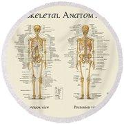 Skeletal Anatomy Round Beach Towel by Gina Dsgn