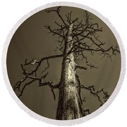 Skeletal Tree Sedona Arizona Round Beach Towel