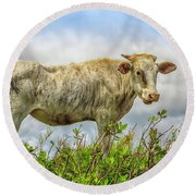 Skinny Cow Round Beach Towel