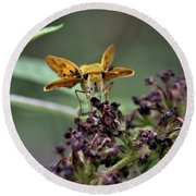 Round Beach Towel featuring the photograph Skipper II by Douglas Stucky