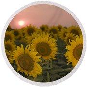 Skn 2178 The Sunflowers At Sunset  Round Beach Towel by Sunil Kapadia