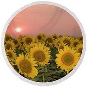 Skn 2179 Sunflower Landscape Round Beach Towel