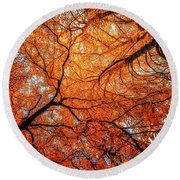 Sky Roots In Forest Red Round Beach Towel