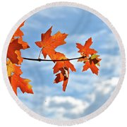 Sky View With Autumn Maple Leaves Round Beach Towel