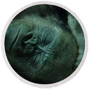 Round Beach Towel featuring the photograph Sleep Tight by Richard Bryce and Family