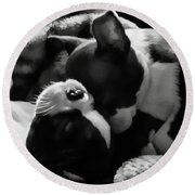 Sleeping Beauties - Boston Terriers Round Beach Towel