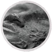 Round Beach Towel featuring the photograph Sleeping by Clare Bambers