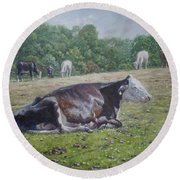 Sleeping Cow On Grass On Sunny Day Round Beach Towel
