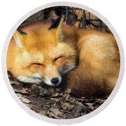 Sleeping Fox Round Beach Towel
