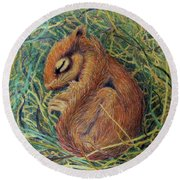 Sleeping Round Beach Towel by Phyllis Howard