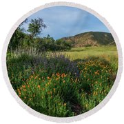 Sleeping Poppies, Mission Trails Round Beach Towel