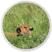 Sleepy Calf Round Beach Towel