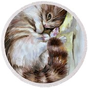 Sleepy Cat 2 Round Beach Towel