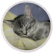 Sleepy Time Round Beach Towel by Donna Brown