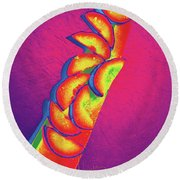 Slices Round Beach Towel by DC Langer