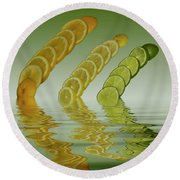 Round Beach Towel featuring the photograph Slices  Grapefruit Lemon Lime Citrus Fruit by David French