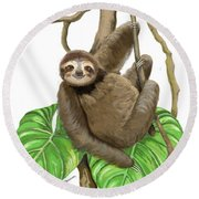 Hanging Three Toe Sloth  Round Beach Towel