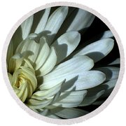 Round Beach Towel featuring the photograph Slumber by Elfriede Fulda