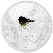 Small Bird On Snow Round Beach Towel