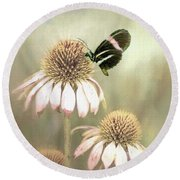 Small Postman Butterfly On Cone Flower Round Beach Towel by Janette Boyd