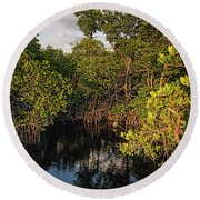 Small Waterway In Vitolo Preserve, Hutchinson Isl  -29151 Round Beach Towel