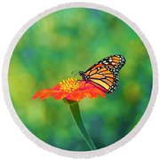 Round Beach Towel featuring the photograph Small Wonders by Byron Varvarigos
