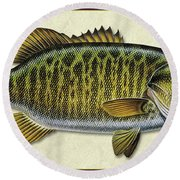 Smallmouth Bass Id Round Beach Towel
