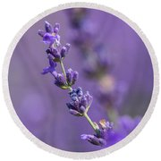 Smell The Lavender Round Beach Towel