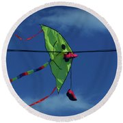 Round Beach Towel featuring the photograph Smile by Mark Blauhoefer