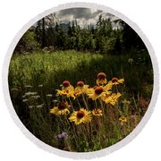 Round Beach Towel featuring the photograph Smiling Faces by Annette Berglund