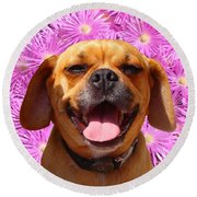 Smiling Pug Round Beach Towel