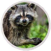 Smiling Raccoon Round Beach Towel