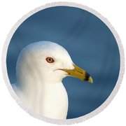 Smiling Seagull Round Beach Towel