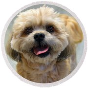 Smiling Shih Tzu Dog Round Beach Towel