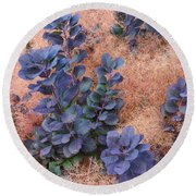 Smoke Bush Round Beach Towel