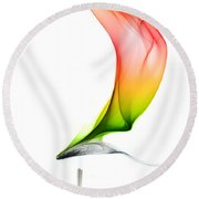 Round Beach Towel featuring the photograph smoke X by Joerg Lingnau