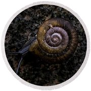 Round Beach Towel featuring the photograph Snail by Jay Stockhaus
