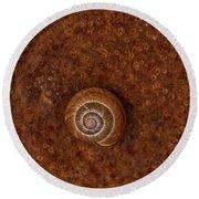 Snail On A Tin Can Round Beach Towel