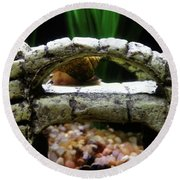 Round Beach Towel featuring the photograph Snail Over A Bridge by Robert Knight