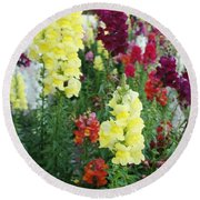 Snapdragon Flowers Round Beach Towel