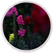 Round Beach Towel featuring the photograph Snapdragon by Greg Patzer
