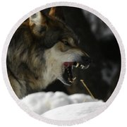 Snarling Wolf Round Beach Towel