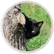 Sneaky Cat Round Beach Towel