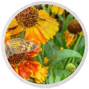 Sneezeweed Round Beach Towel by Shelley Neff