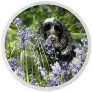 Sniffing Bluebells Round Beach Towel